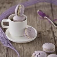 Lavendel-Macarons