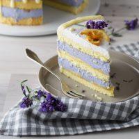 Zitronen-Lavendel-Torte mit weißer Schokolade